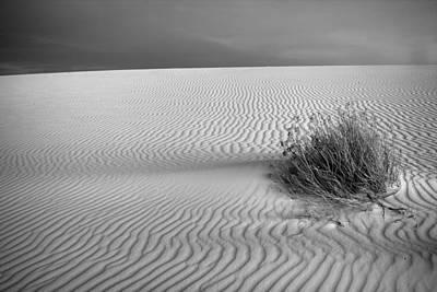 White Sands Scrub Bw Art Print