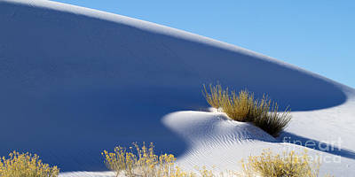 Photograph - White Sands Shadows by Martha Marks