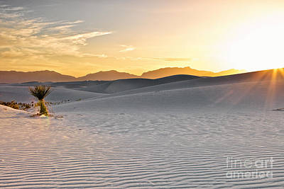 Photograph - White Sands Sunset by Erika Weber