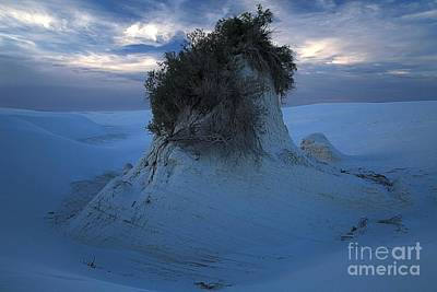 Photograph - White Sands Turns Blue by Adam Jewell