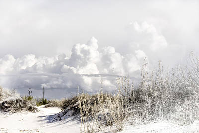 Digital Art - White Sands Winter by Georgianne Giese