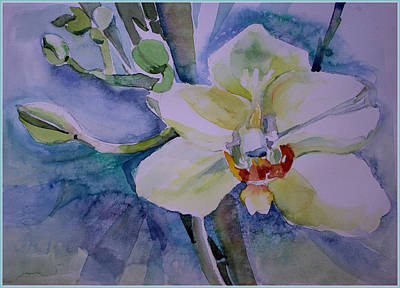 Orchids Drawing - White Shades Of Orchid by Mindy Newman