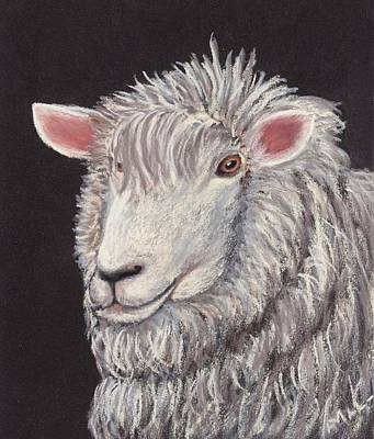 White Sheep Art Print