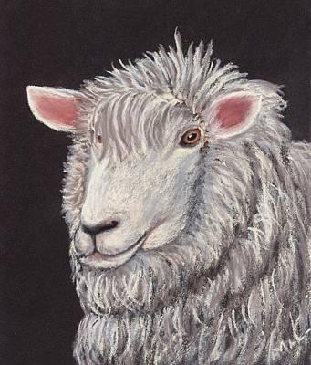 White Sheep Art Print by Anastasiya Malakhova