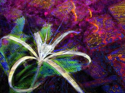 Digital Art - White Spider Flower On Orange And Plum - Horizontal by Lyn Voytershark