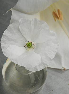 Photograph - White Still Life by Chris Berry