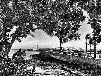 White Street Pier Key West Art Print by Joan  Minchak