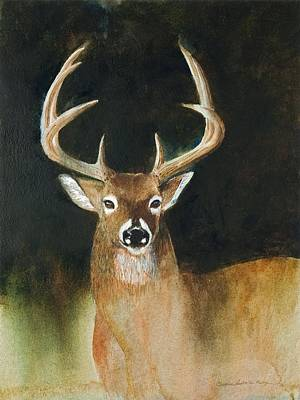 Moose Painting - White Tail Buck by Christine Hodecker-George