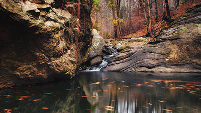Stream Lanscape Photograph - White Tail by Rob Dietrich
