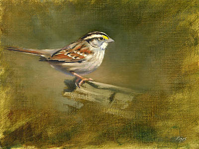 Painting - White-throated Sparrow by Neil Rizos