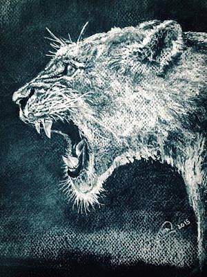 Animals Drawings - Leon Portrait by Alban Dizdari