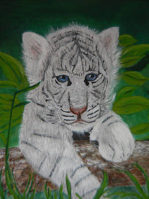 Painting - White Tiger Cub by Mary M Collins