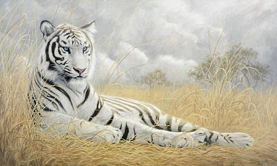White Tiger Art Print by Lucie Bilodeau
