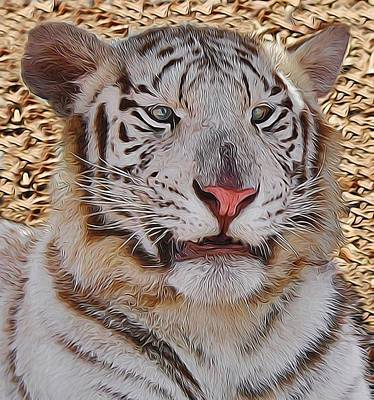 Photograph - White Tiger Smile by Diane Alexander