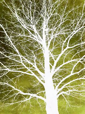 Photograph - White Tree Silhouette On Green by Patricia Strand