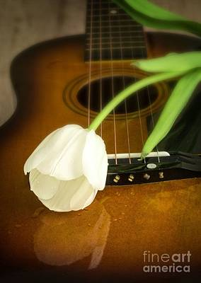 Floral Photos - White Tulip flower and guitar by Edward Fielding