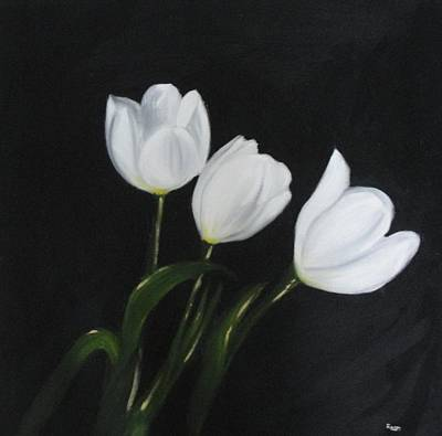 White Blossoms Painting - White Tulips On Black by Maureen Hargrove