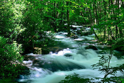 White Water On Little River Art Print