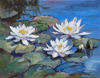 Flower Painting - White Waterlilies by Irek Szelag
