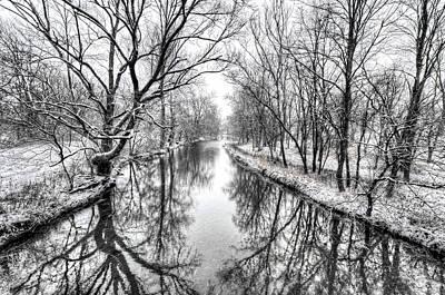White Winter Original by Shawn Jackson