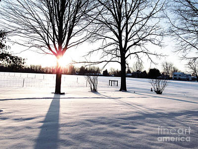 Airplane Paintings - White Winter Sunrise by Tina M Wenger