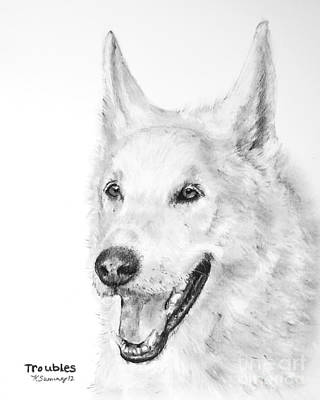 Husky Drawing - White Wolf Dog Hybrid by Kate Sumners