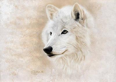 Wild Wolf Mixed Media - White Wolf by Jeanne Delage