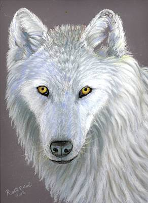 White Wolf Art Print by Ruth Seal