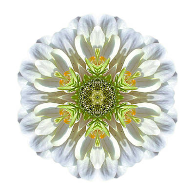 Photograph - White Zinnia Elegans II Flower Mandala White by David J Bookbinder