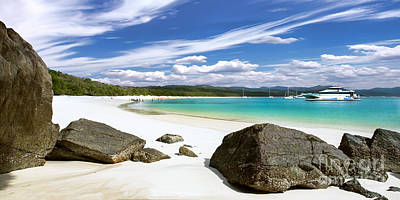Photograph - Whitehaven Beach by Shannon Rogers