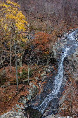Photograph - Whiteoak Canyon Overlook 2 by Karen Saunders
