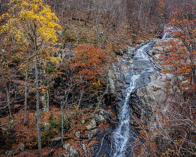 Photograph - Whiteoak Canyon Overlook by Karen Saunders