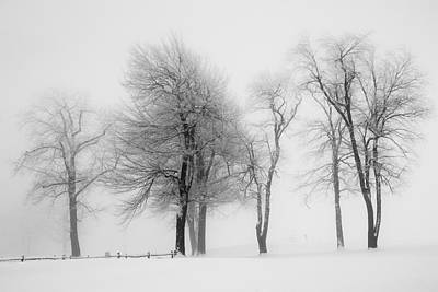 Photograph - Whiteout by Emmanuel Panagiotakis