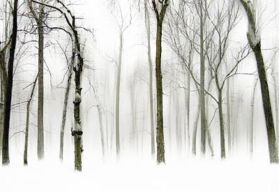 Snow Digital Art - Whiter Shade Of Pale by Jessica Jenney