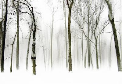 Snow Landscape Digital Art - Whiter Shade Of Pale by Jessica Jenney