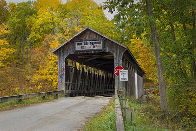 Flat River Fallasburg Bridge Photograph - White's Covered Bridge In Fall by Randall Nyhof
