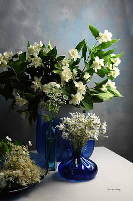 Photograph - White Elegance From The Garden by Randi Grace Nilsberg