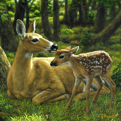Mother And Baby Painting - Whitetail Deer - First Spring - Square by Crista Forest