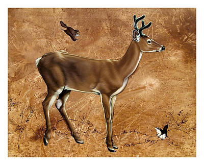 Whitetail Deer Young Buck Art Print by Philip Slagter