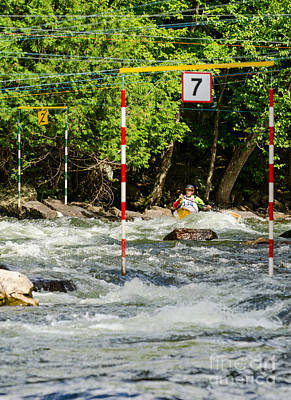 Photograph - Whitewater Canoe Slalom by Les Palenik