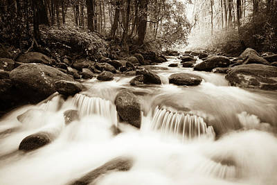 Photograph - Whitewater In The Smoky Mountains by Wbritten