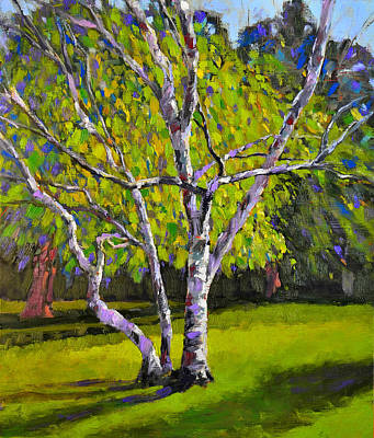 Painting - Whitnall Park Birch Trees by Anthony Sell