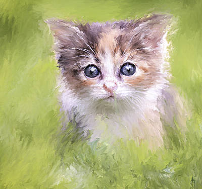 Cute Kitten Digital Art - Who I Am And Who You Are by Yury Malkov