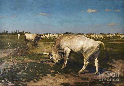 Fauna Painting - Who Is The Herd Boss by Pg Reproductions