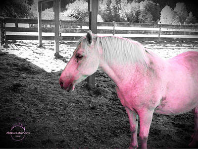 Photograph - Who Says I Can't Have A Pink Horse by Absinthe Art By Michelle LeAnn Scott