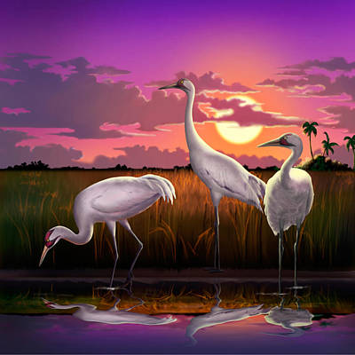 Whooping Cranes At Sunset Tropical Landscape - Square Format Original by Walt Curlee