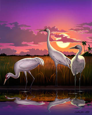 Whooping Cranes Tropical Florida Everglades Sunset Birds Landscape Scene Purple Pink Print Original by Walt Curlee