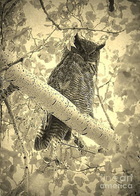 Photograph - Who's Watching - Sepia by Carol Groenen