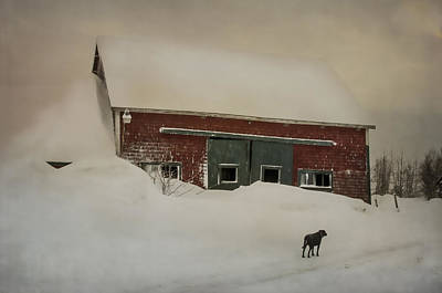 Maine Old Barn Photograph - Why Some Barns Are Painted Red by Susan Capuano