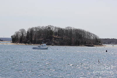 Beastie Boys - Wicket Island - Onset Massachusetts by Spirit Baker